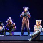 Musical Meow-劇照
